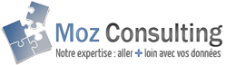 Logo Moz Consulting
